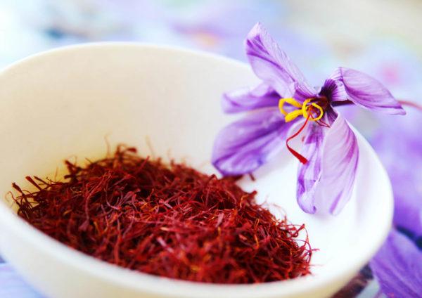 Saffron-Cup-Flower
